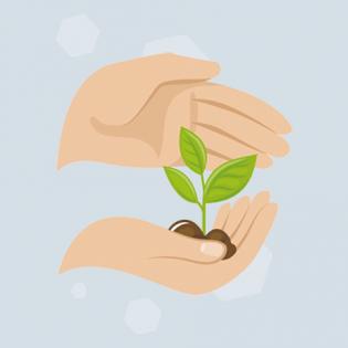 202010_Blog_Beitrag_Nachhaltigkeit_800x467